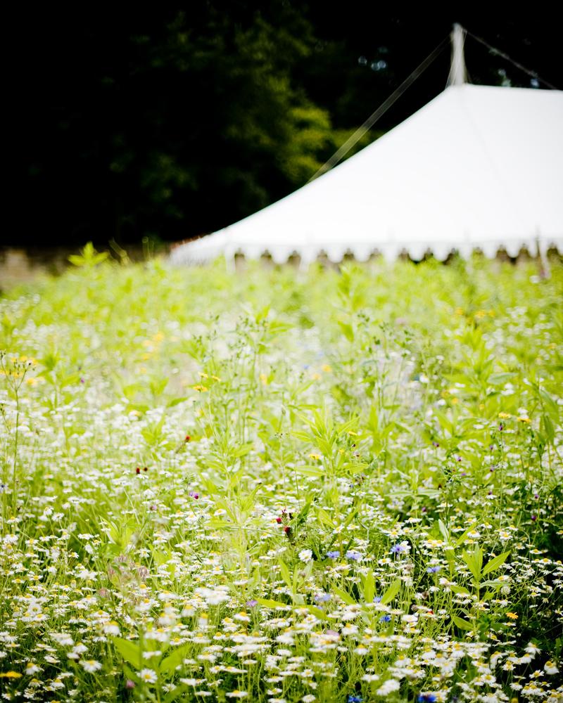 country garden wedding photographs by Wild Weddings